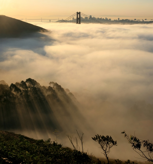 San_francisco_in_fog_with_rays